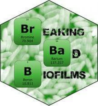 BREAK BIOFILMS